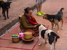 After dawn, one woman had her own ceremony with the street dogs.